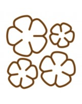 Flowers AC1