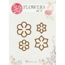 Flowers AC3