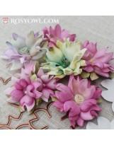 Flowers AC6
