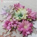 Kwiatki AC6